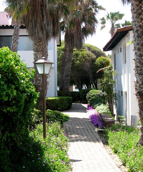 Rosarito Mexico Beach House Rentals: La Paloma Condominium Resort